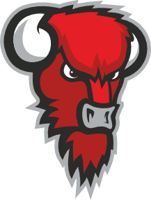 bisons_logo_paa[1]